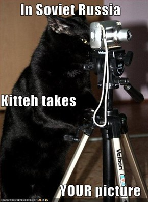 In Soviet Russia Kitteh takes YOUR picture