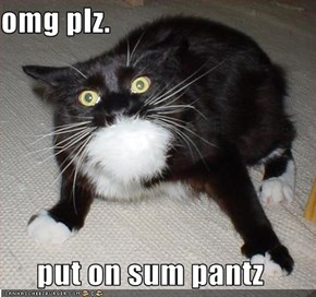 omg plz.  put on sum pantz