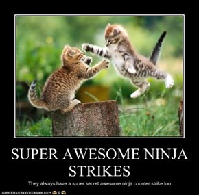 SUPER AWESOME NINJA STRIKES