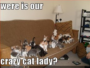 were is our  crazy cat lady?