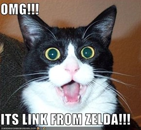 OMG!!!  ITS LINK FROM ZELDA!!!