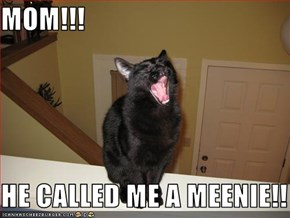 MOM!!!  HE CALLED ME A MEENIE!!