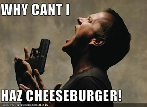 WHY CANT I  HAZ CHEESEBURGER!
