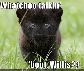 Whatchoo talkin'  'bout, Willis??