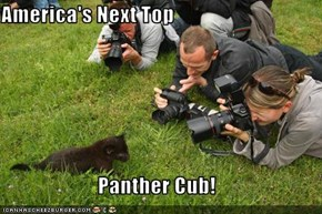 America's Next Top  Panther Cub!