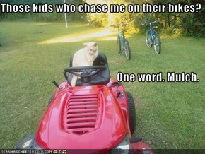 Those kids who chase me on their bikes? One word. Mulch.