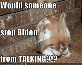 Would someone stop Biden from TALKING?!?