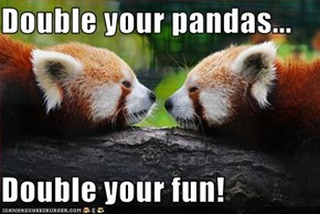 Double your pandas...  Double your fun!