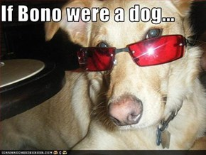 If Bono were a dog...