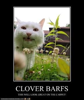 CLOVER BARFS
