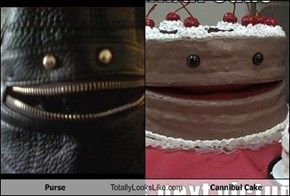 Purse Totally Looks Like Cannibul Cake
