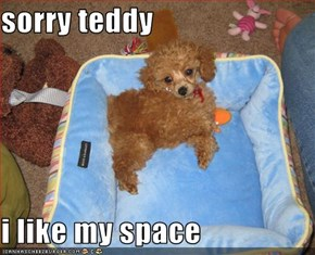 sorry teddy  i like my space
