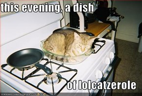 this evening, a dish  of lolcatzerole