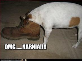OMG......NARNIA!!!!