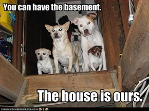 You can have the basement.