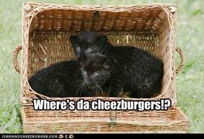 Where's da cheezburgers!?