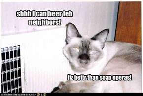 shhh I can heer teh neighbors!