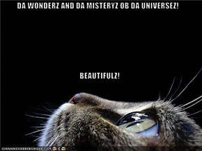 DA WONDERZ AND DA MISTERYZ OB DA UNIVERSEZ! BEAUTIFULZ!