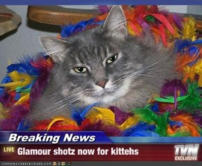 Breaking News - Glamour shotz now for kittehs