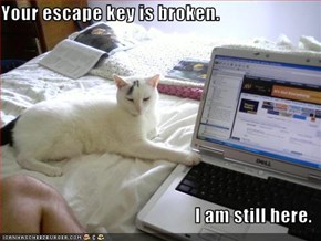 Your escape key is broken.  I am still here.