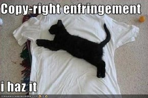 Copy-right enfringement  i haz it
