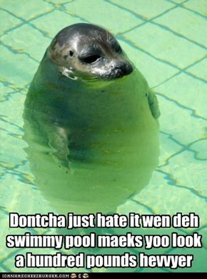 Dontcha just hate it wen deh swimmy pool maeks yoo look a hundred pounds hevvyer