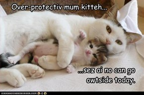 Over-protectiv mum kitteh...