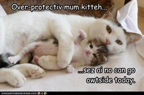 Over-protectiv mum kitteh...