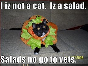 I iz not a cat.  Iz a salad.  Salads no go to vets.
