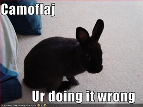 Camoflaj  Ur doing it wrong