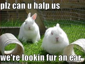 plz can u halp us  we're lookin fur an ear