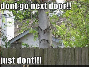 dont go next door!!  just dont!!!
