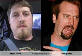 trent lloyd Totally Looks Like tom green