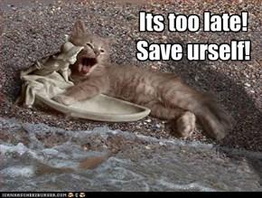Kitteh overboard!