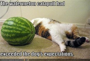 The watermelon catapult had  exceeded the dog's expectations.