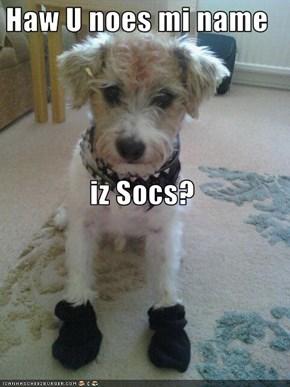 Haw U noes mi name  iz Socs?