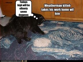 Weatherman kitteh takes his work home wif him