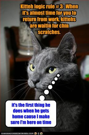 Kitteh logic rule # 3:  When it's almost time for you to return from work, kittehs are waitin for chin scratches.