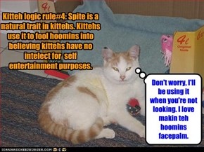 Kitteh logic rule#4: Spite is a natural trait in kittehs. Kittehs use it to fool hoomins into believing kittehs have no intelect for  self entertainment purposes.