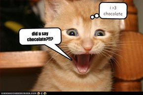 did u say chocolate?!!?