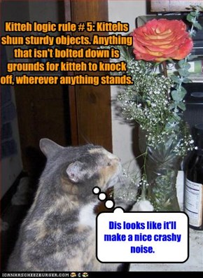 Kitteh logic rule # 5: Kittehs shun sturdy objects. Anything that isn't bolted down is grounds for kitteh to knock off, wherever anything stands.