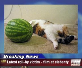 Breaking News - Latest roll-by victim - film at elebenty