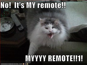 No!  It's MY remote!!  MYYYY REMOTE!!1!