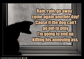 Rain, rain, go away - come again another day! 'Cause if the dog can't  go out to play I'm going to end up killing his annoying ass.