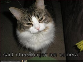 i said 'cheezburger' not 'camera'.