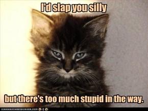 I'd slap you silly