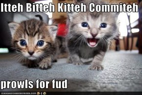 Itteh Bitteh Kitteh Commiteh  prowls for fud