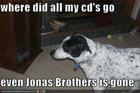 where did all my cd's go  even Jonas Brothers is gone