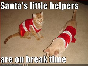Santa's little helpers  are on break time