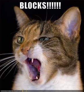 BLOCKS!!!!!!